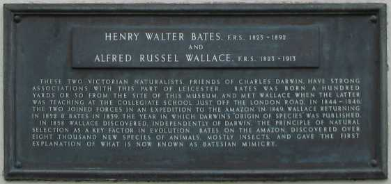 Plaque commemorating Wallace and Bates at New Walk Museum, Leicester.